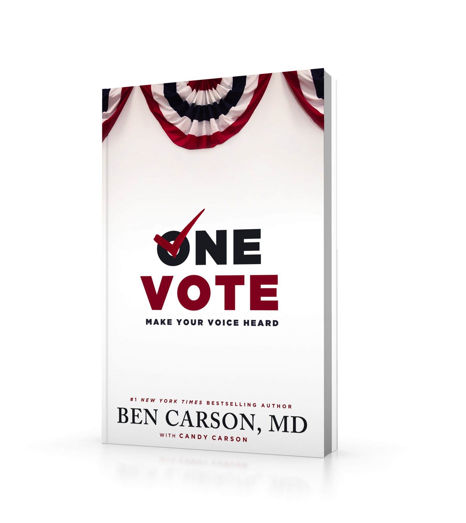 OneVoteBookCover